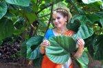 Эльнара сняла клип в джунглях Индии [Тизер]