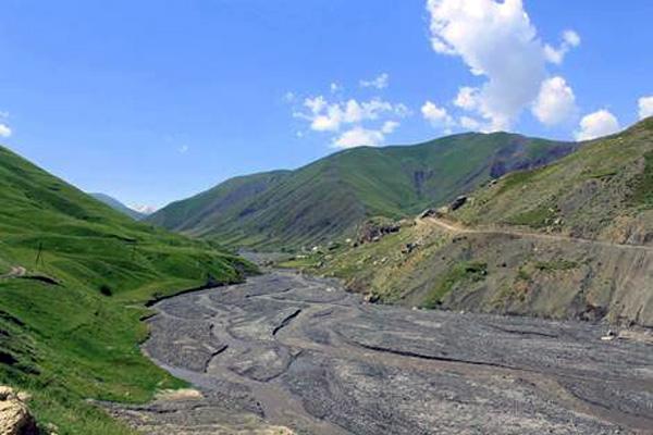 В Азербайджане проведут инвентаризацию лесных ресурсов: Последний раз проводилась более 30 лет назад