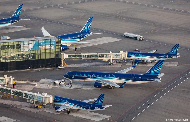 AZAL продолжит прямые авиарейсы Баку-Нью-Йорк