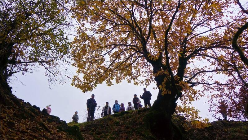 Трекинг к суфийским  пещерам и средневековым объектам в районе Маразы-Шамахи