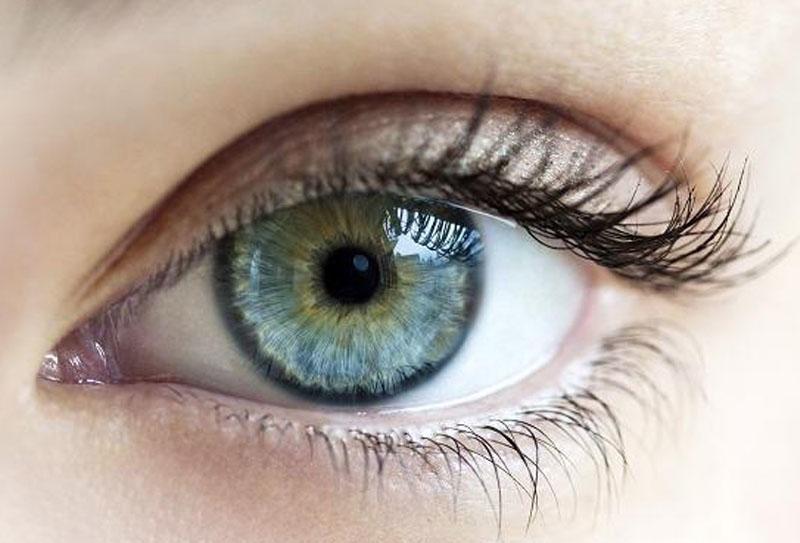 В Азербайджане разрешат извлекать роговицу глаз у умерших